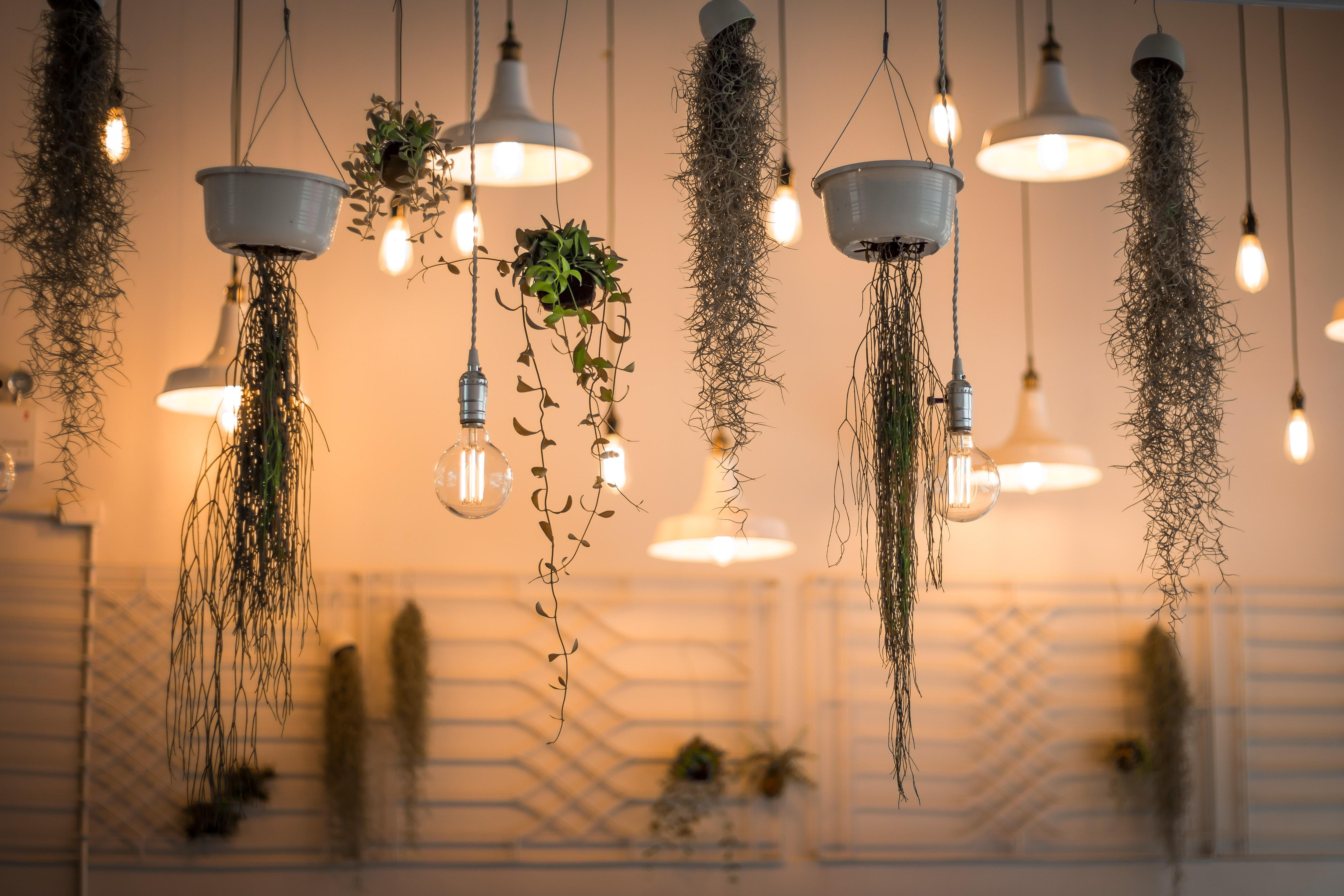 patrick schneider mFnbFaCIu1I unsplash - Sådan får du den rigtige belysning ind i din bolig
